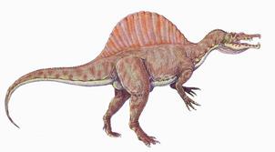 Spinosaurus1DBa