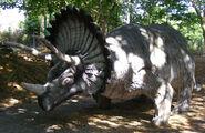 Dinoland triceratops