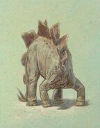 William D. Berry Stegosaurus.