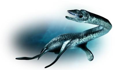 Marine reptile-large