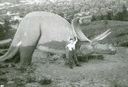 Dinosaur-Park-Triceratops