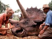 Triceratops-jurassic-park