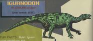 JPI Iguanodon