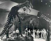 Carnegie-kids-t-rex custom