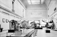 Extinctmonstersfront 1913