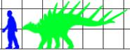 Kentrosaurus scale