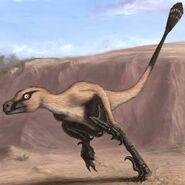 New Discovery Linheraptor