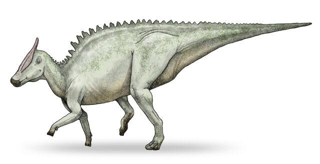 File:Saurolophus-v5.jpg