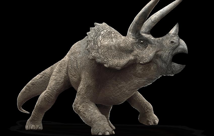 Resultado de imagen para triceratops