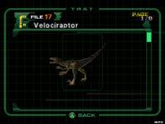 Velociraptor (dc2 danskyl7) (1)