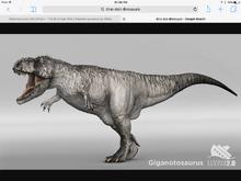 Gigatosaurus