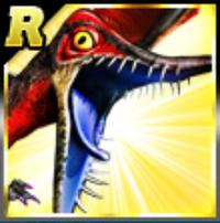 R Rhamphorhynchus