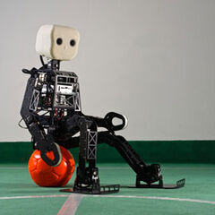 Robots enjoyed relaxing on medicine balls during the peaceful times