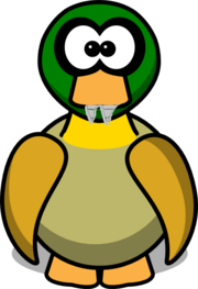 Saber tooth duck