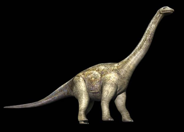 File:Alamosaurus.png