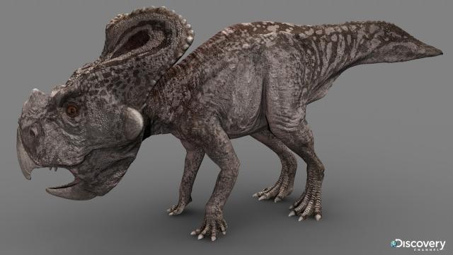 File:Protoceratop.jpg