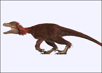 File:Europe pyroraptor hzoom.jpg