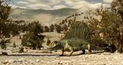 Dimetrodon 3