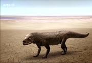 Ticinosuchus