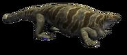 Cotylorhynchus