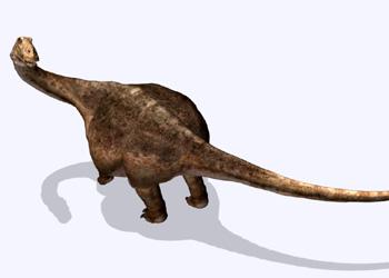 File:Sa saltasaurus hzoom.jpg