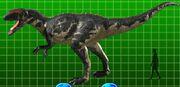 Yangchuanosaurus 2