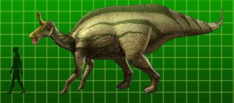 File:Tsintaosaurus.jpg