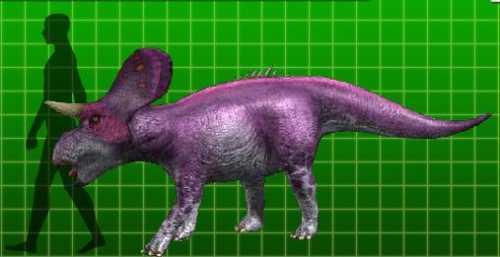 File:Zuniceratops.jpg
