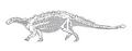 Talarurus skeleton