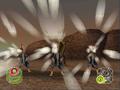 Egg Attack 2