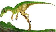 Eoraptor3