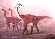 Pic camarasaurus