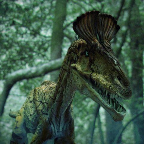 File:CryolophosaurusPortrait.jpg