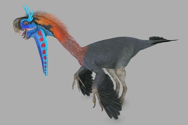 File:Gigantoraptor female.jpg