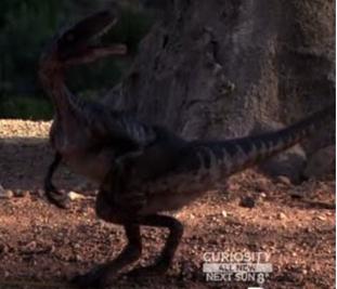 File:Ornitholestes new.png
