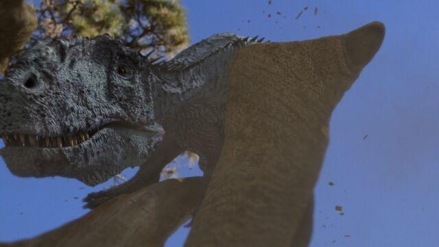 File:Sinraptor2.jpg