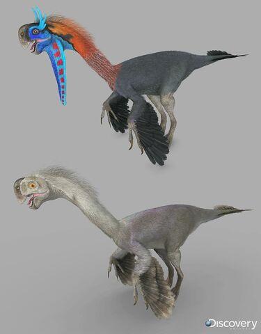 File:Gigantoraptor.jpg