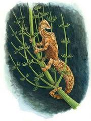 Dolabrosauruslarge