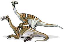 Nanshiungosaurus-0