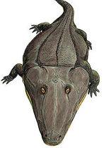 220px-Mastodonsaurus3
