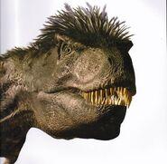 Gorgosaurus-4