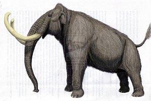 Kikinda mammoth by dibgd-d366ctx