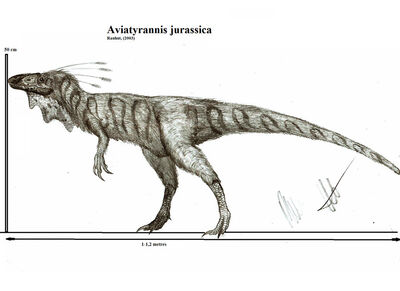 Aviatyrannis jurassica by teratophoneus-d549y2v