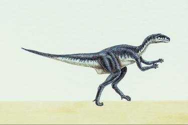 Yandusaurus-10473