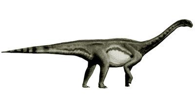 Macrurosaurus-dinosaurier-info