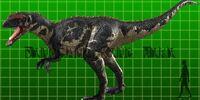 Yangchuanosaurus/Gallery