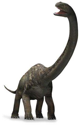 File:Mamenchisaurus-3 0a27.jpg