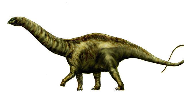 File:Apatosaurus louisae by durbed.jpg