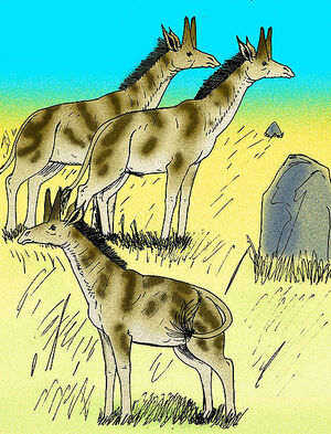 457px-Honanotherium schlosseri 02