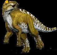 Edmontosaurus whole kwwswf